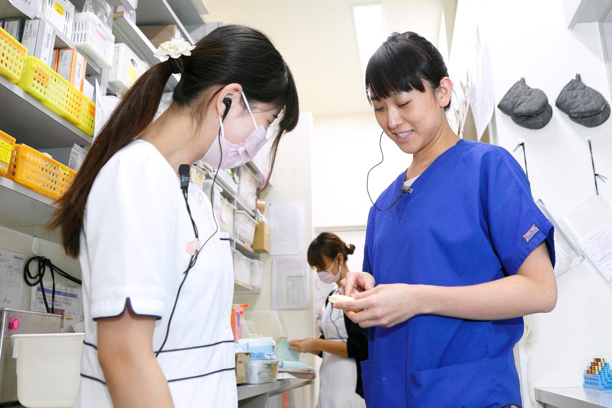 江東区東雲、豊洲の歯医者のキャナルコート歯科クリニック チーム医療の取り組み
